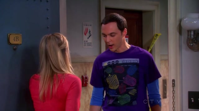 The Big Bang Theory S06E17 HDTV XviD AFG avi